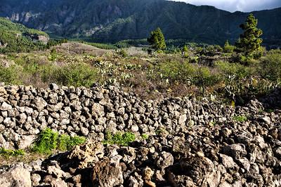 Tour Santa Cruz La Palma to Calderade Taburiente
