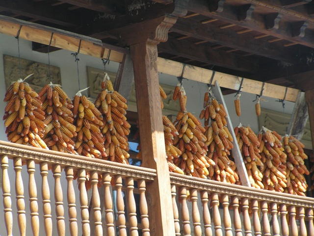 Mazorcas en una terraza