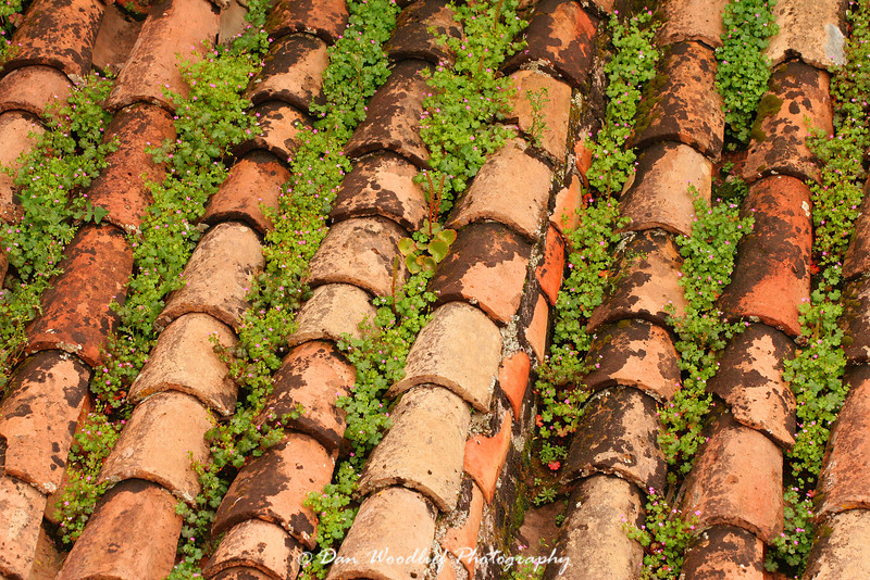 Red-tiled roof in Cordoba.