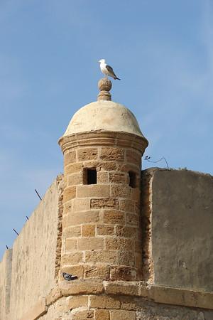 Cádiz - Castillo de Santa Catalina