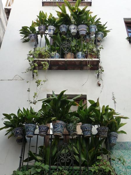 Beautiful blue pots in windows in Granada