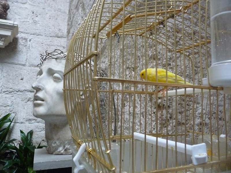 Juxtaposition of a Christ sculpture and innocent yellow canary in a cage near the entryway of the Church of San Juan de Dios in Seville.