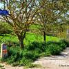 the way to Logroño