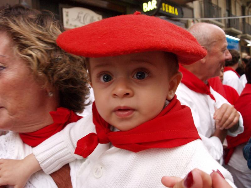 Navarrico y futuro corredor del encierro (Navarra)