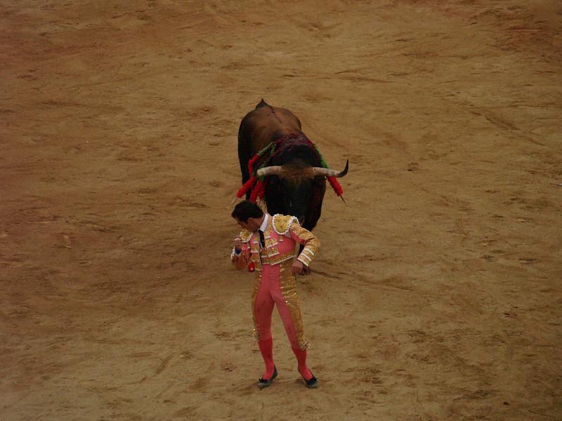 """El Fandi dando la espalda a """"Batallador"""", 600 kg."""