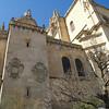 Catedral de Santa Maria de Segovia, conocida como la Dama de las Catedrales por sus dimensiones y su elegancia, es una catedral construida entre los siglos XVI y XVIII, de estilo gótico con algunos rasgos renacentistas.