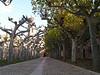 Abadia de la Veruela