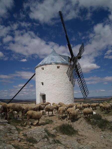 Los molinos de Consuegra, contra uno de éstos dicese luchó Don Quijote de la Mancha