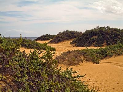 Fuerteventura, Corraljeo, dunas de Corralejo.