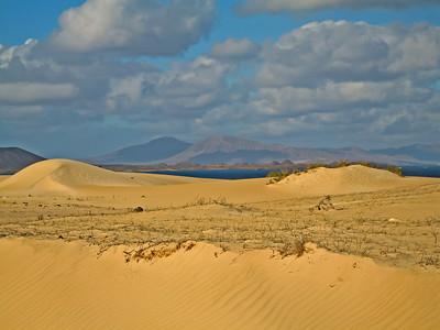 Fuerteventura, Corraljeo, in the Dunas de Corralejo.