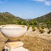 Vineyard amonst hills of Costa Brava Spain