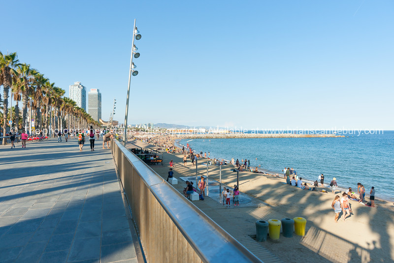 Barcelonetta Beach late afternoon with long shadows of palm trees across people on promenade and beach Barcelona Spain