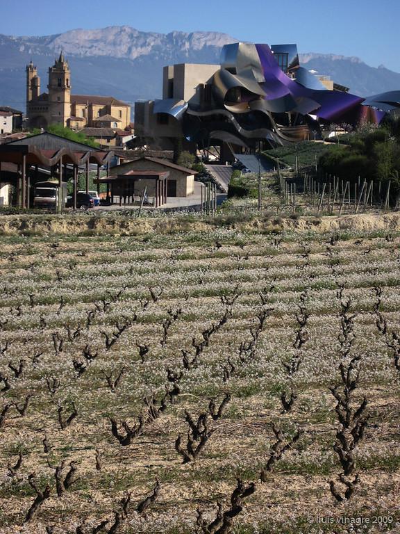 ciudad del vino, bodegas del marqués de riscal, elciego, rioja alavesa