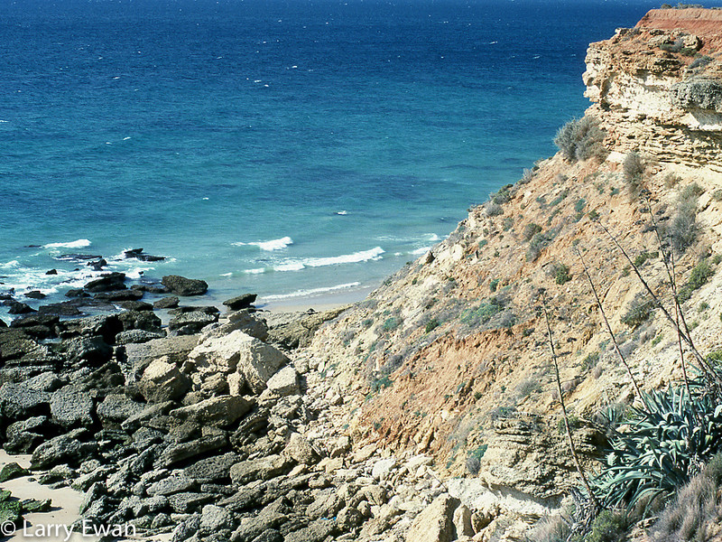 My favorite beach in the world.  The cliffs at Cape Trafalgar, Andalusia.  Olympus OM-1n, 50mm f/1.4, Kodachrome 25.