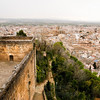 View from The Alhambra of Granada