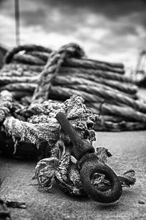 282/365 - Tied to the Ocean