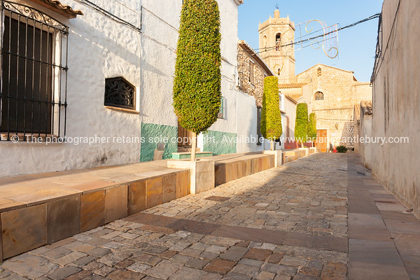 Trimmed trees in narrow Spanish traditional village streets