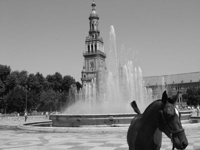 horse and fountain