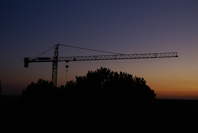 Crane at sunset, Madrid