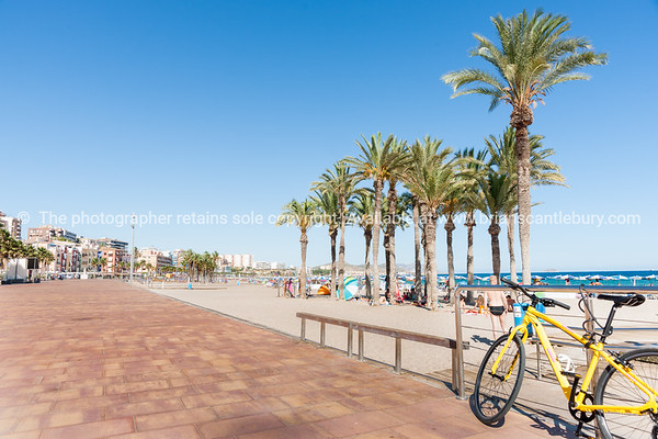 Summer Mediterranean beach yellow bicycle and grove of palm trees on beach at La Vila Joisa, Alicante Spain