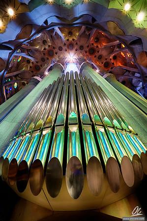 Garden of pipes - Organ of the Sagrada Familia