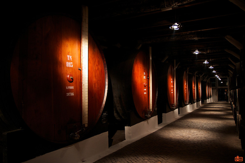 Here is a row of 23,000 litre wine casks for the Sandeman Port fortified wines.<br /> _MG_5411