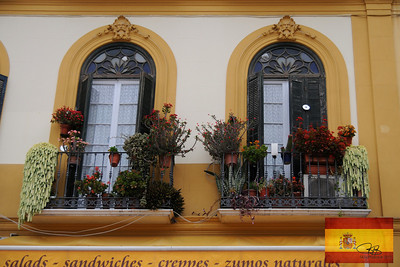 Beautiful windows in Malaga.