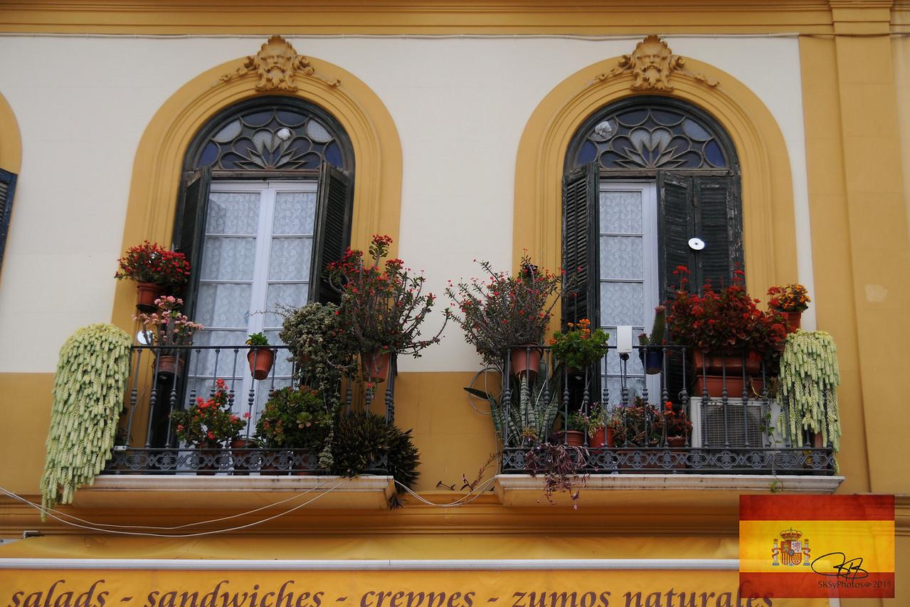 Beautiful windows in Malaga.