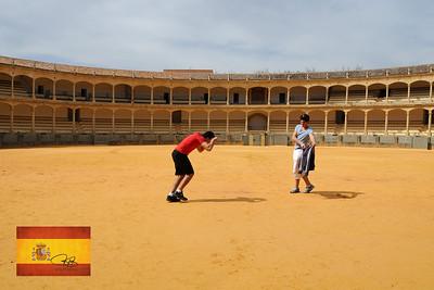 The battle of Man vs. Beast.  Ronda, Spain.