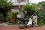A motorbike with a novel shock absorber for its basket. Chichijima, Ogasawara, Japan.
