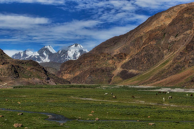 The calm meadows and the grazing horses belie the harsh weather the Himalayan Valleys endure