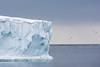 The edge of the Austfonna ice cap, on Nordaustlandet island in Svalbard