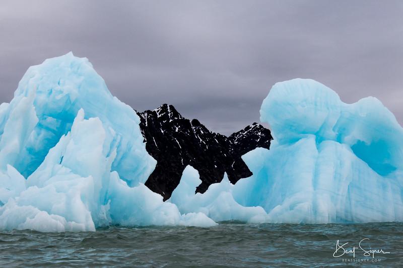 Arctic Dinosaur