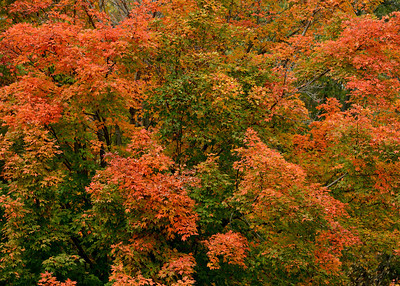 Sports Leisure Travel, Fall Foliage, 10-2013