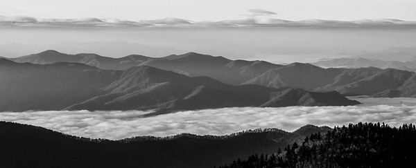 Great Smoky Mountains Valley Fog