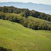Riding Horseback on Bay Area Ridge Trail