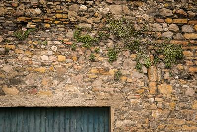 Moss and Door, Lyon