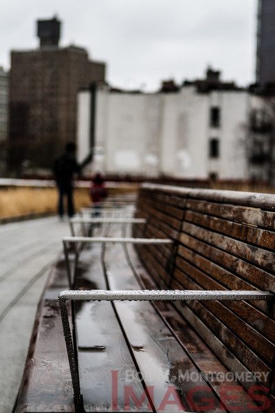 Arm in Arm - The High Line, Manhattan's West Side, NYC