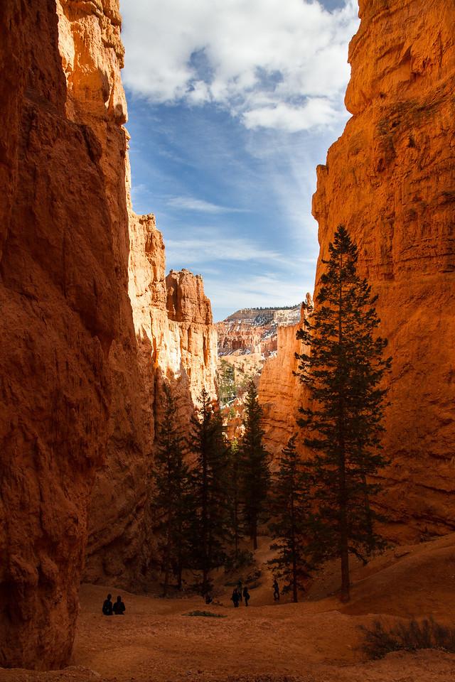 Spring Break Road Trip 2012