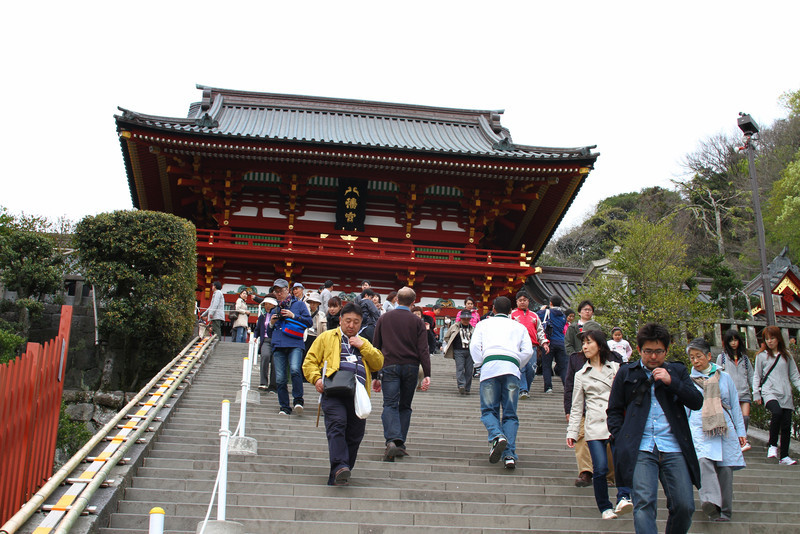 The foreigners begin their pilgrimmage to Hachiman-gu shrine