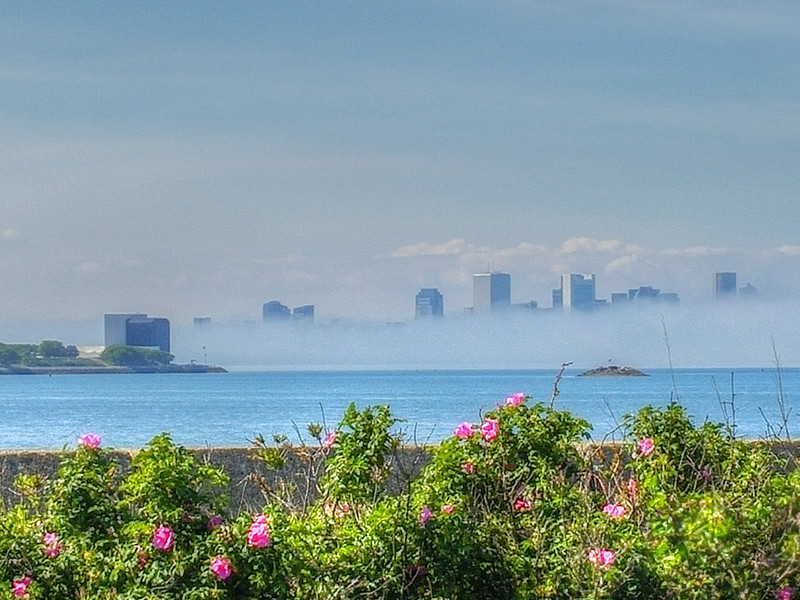 Summer view of the Boston skyline as fog rolls in.
