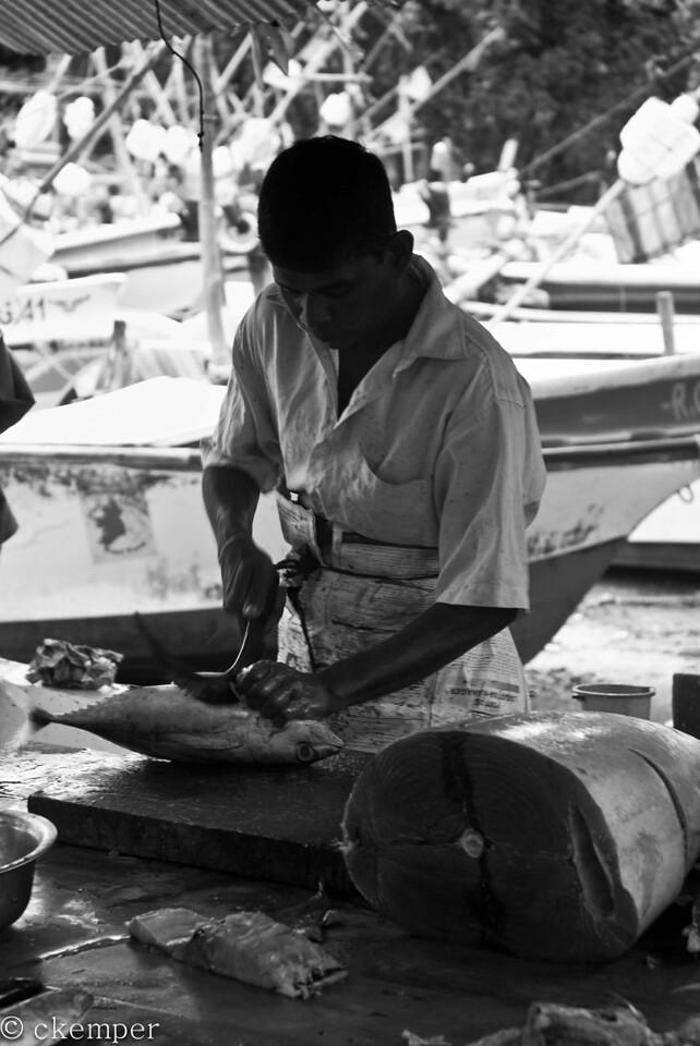 Fish Market<br /> Sri Lanka