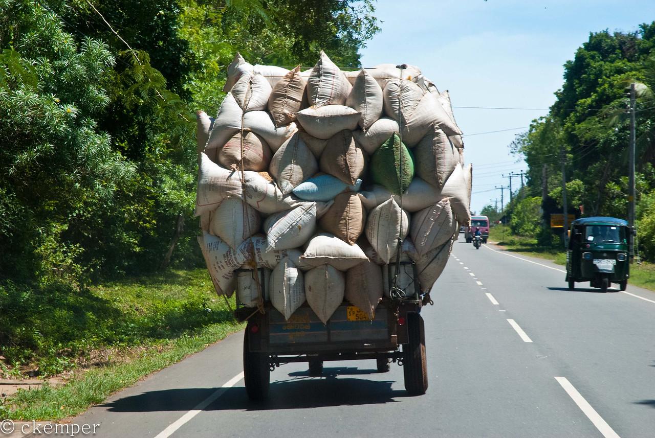 Along the Road<br /> Sri Lanka
