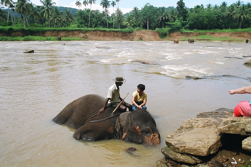 Chatting with the mahout while the elephant enjoys his soak