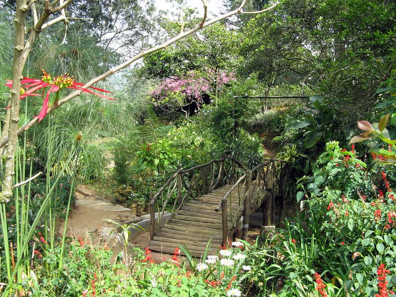 Tientsin Bungalow gardens