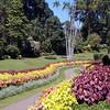Peradeniya Botanic Gardens near Kandy