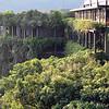 Kandalama Hotel near Dambulla