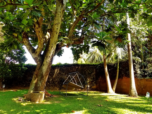 Lodge Nineteen, Negombo
