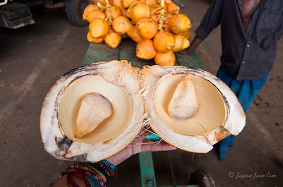 How to eat king coconut properly