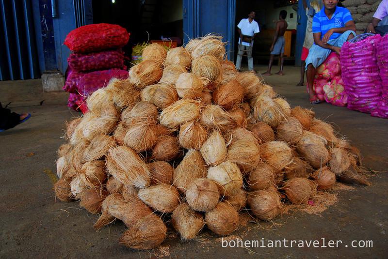 Coconuts at Dambulla wholesale market in Sri Lanka.